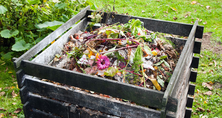 where to put a compost bin