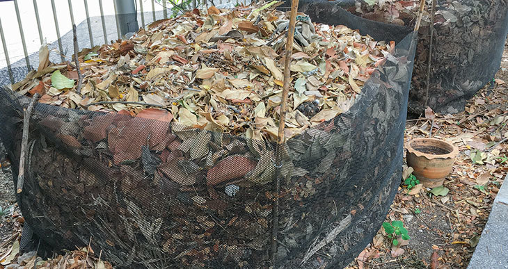 storing leaves for compost