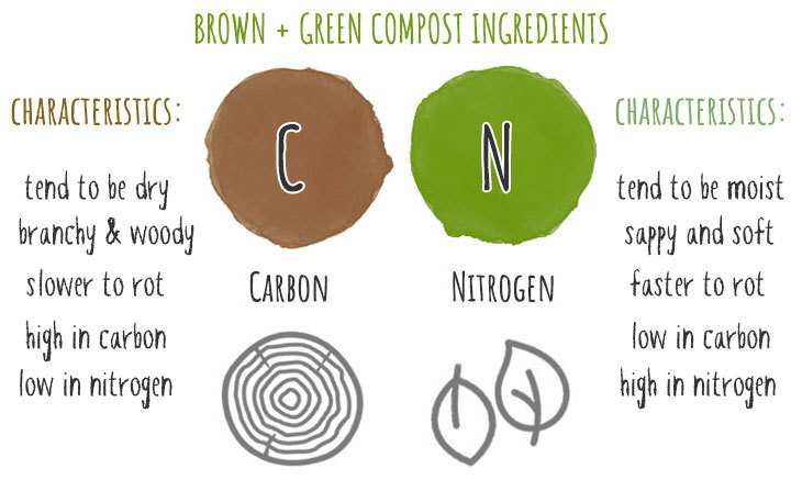 brown and green compost ingredients