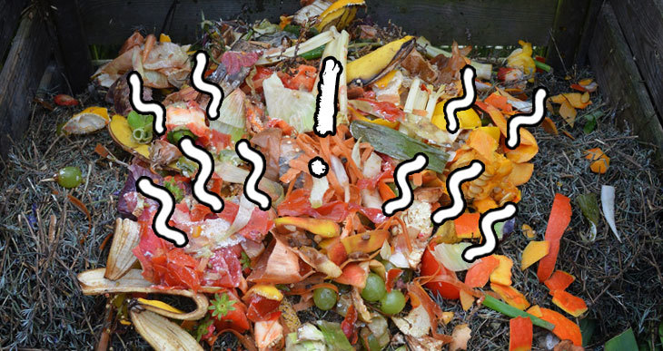 does compost smell