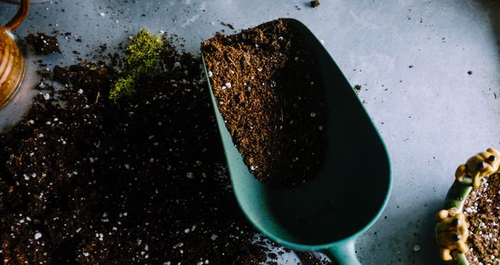 Compost vs Fertilizer