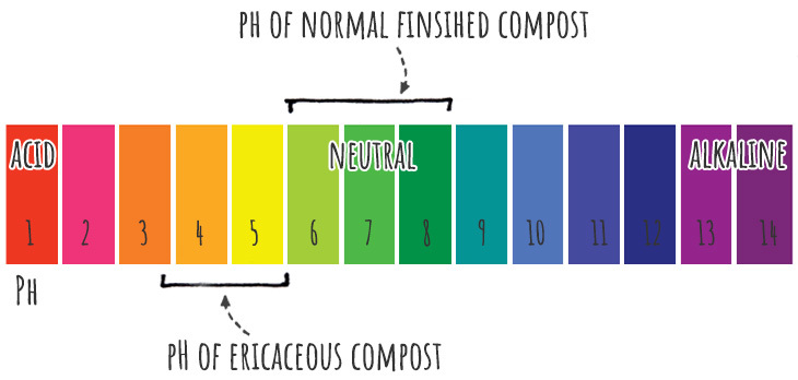 ericaceous compost pH scale